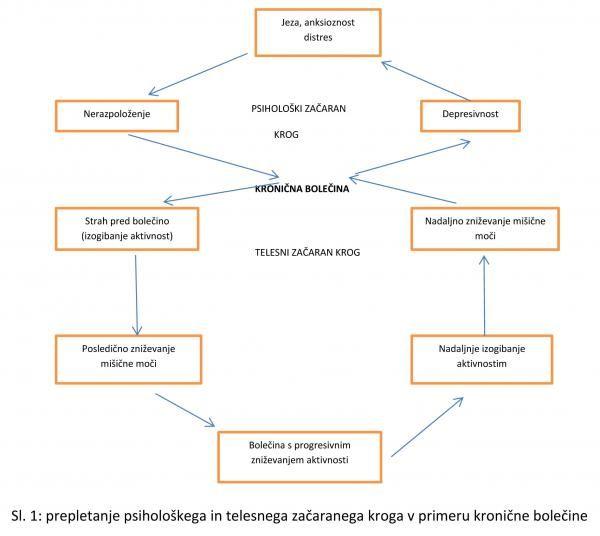 Resizedimage600536 Kronicne Bolecine Slika