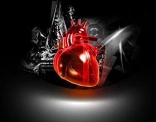 Clanek Srce Ozilje Prihicni